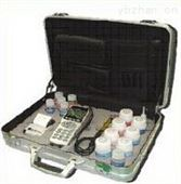 XRS-DY-2501B便携式氯离子含量测试仪