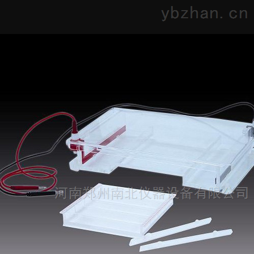 DYCP-31F琼脂糖水平电泳仪(槽)