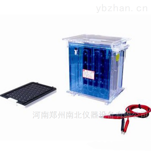 DYCZ-40A转印电泳仪(槽)