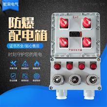 BXX51防爆电源检修插座箱