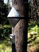 EMS 81探针式植物茎流测量系统