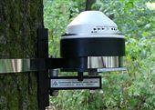 DRL26 树木茎杆生长测量仪