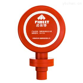 FM-YSG法米特油压力表