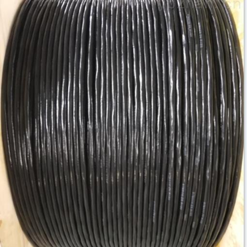 氟塑料绝缘计算机电缆DJFPVP DJFPVRP
