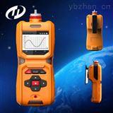 TD600-SH-HCL防爆型便携式检测报警仪_二合一气体测定仪