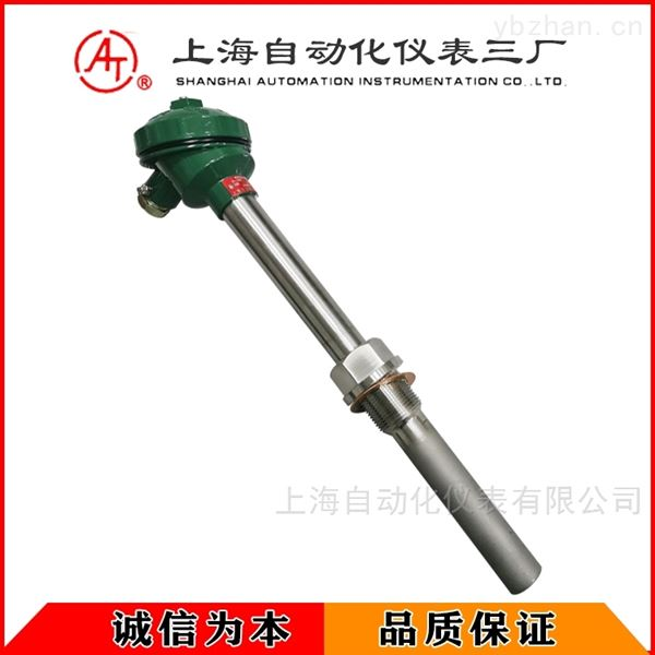 WZPN2-230双支耐磨热电阻