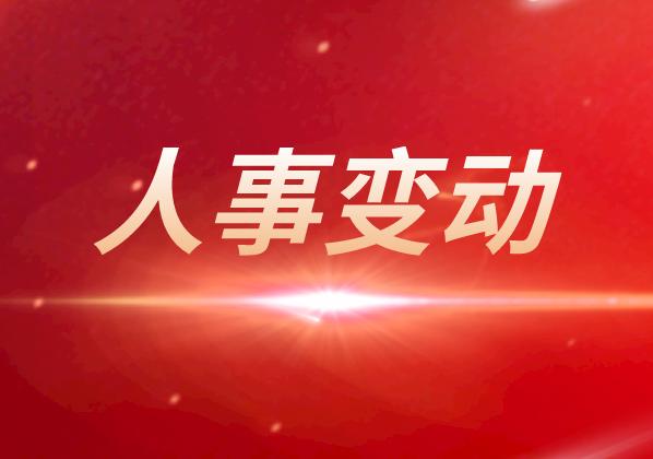 歌爾股份聘任李永志為公司財務總監