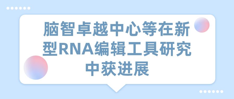 腦智卓越中心等在新型RNA編輯工具研究中獲進展