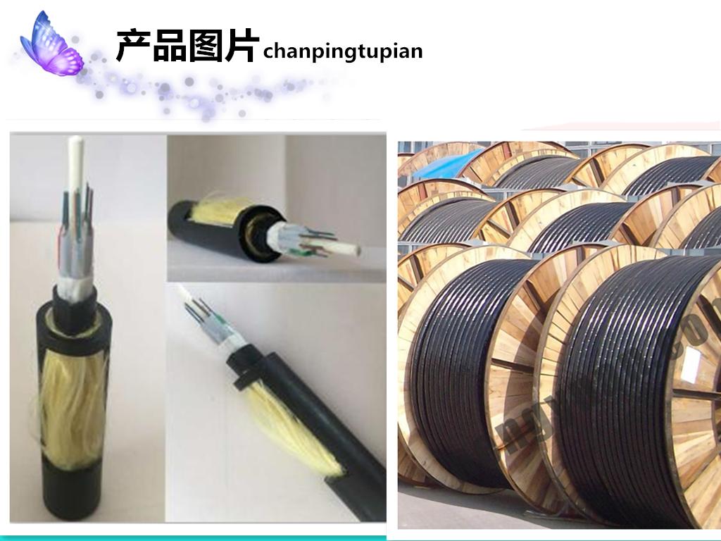 <strong>赤峰光缆GYTA53-24B1单模光缆</strong>价格