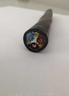 安徽天康变频电缆